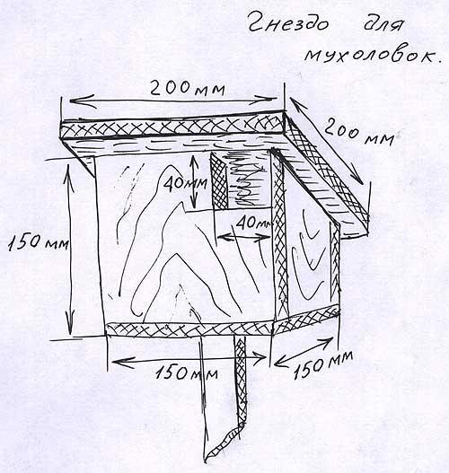 Как построить баню своими руками по самым современным технологиям.  Русская баня своими.