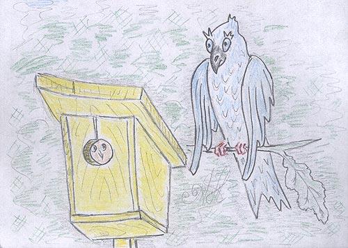 Сковречники и дуплянки для белок и птиц