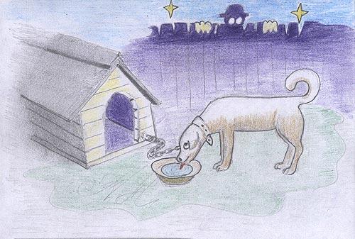 Шторка для собачьей будки
